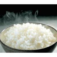 Bí quyết bảo quản cơm ngon